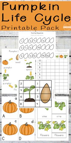 FREE Pumpkin Life Cycle Worksheets for Preschool, Prek, Kindergarten, first grade, 2nd grade, and 3rd grade kids to practice alphabet letters, life cycle, writing, skip counting, nouns, and so much more! FUN Fall worksheets for kids