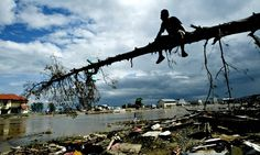Why gender disaster data matters: 'In some villages, all the dead were women'.  Data on the 2004 tsunami found that women were more affected than men. It's time to recognise gender in disaster response