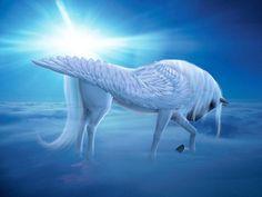pretty pictures of peaguses | Pegasus & Unicorn - Fantasy Animals Wallpaper (13992239) - Fanpop ...