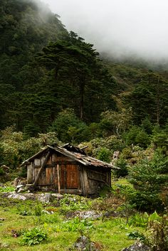 Cabin, Yumthang Valley, Sikkim, India