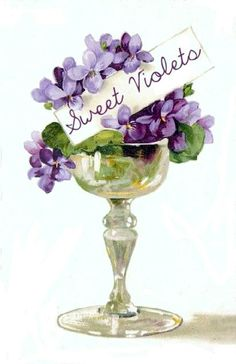 purple violet with name tag Images Vintage, Vintage Cards, Vintage Paper, Vintage Postcards, Vintage Flowers, Vintage Floral, Sweet Violets, Lily Of The Valley, Pansies