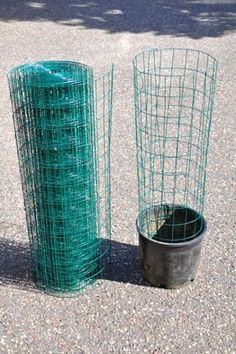 Interra Un Tubo Di Plastica Nel Vaso: Ecco Un'idea Geniale Per Avere Piante Rigogliose