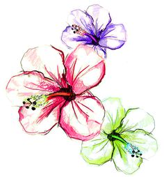 Newest craze in tattooing: Water Color tatts - very artsy. Hibiscus... maybe? I'm looking for a cover tattoo, about the size of a quarter or silver dollar for inner ankle.