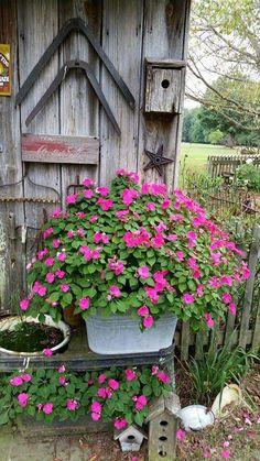 Garden'°planter, door & rustic goodies°