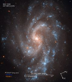 Blue young stars shine in the spiral arms of galaxy NGC 5584, as shown by this Hubble Space Telescope image.