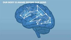 The Neuroscience of Human Agility in Organizations