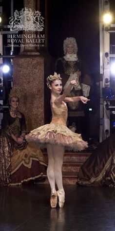 Birmingham Royal Ballet - The Sleeping Beauty; Maureya Lebowitz; photo: Ty Singleton