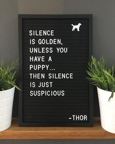 47 Super Ideas Dogs And Puppies Quotes Humor Golden Retriever Quotes, Dogs Golden Retriever, Dog Quotes Funny, Funny Dogs, Dog Qoutes, Dog Sayings, Funny Puppies, Silence, Golden Puppy