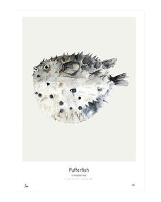 Ocean // Pufferfish | My Deer Art Shop