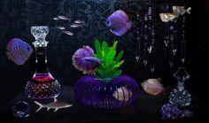 Exotic Aquatics™ Suspension System Designer Aquariums…