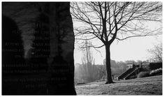 Paul Pryce       @prycefilmphoto   10 ene.In remembrance. #PhotographyIsArt #blackandwhitephotography #BlackandWhite #photographyislife #photographylovers #photography