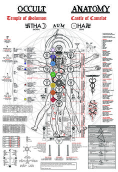 The Occult Anatomy Print - Kabbalah, Alchemy, Tree of Life, Golden Dawn, Hermetics, Chakras, Astrology, Kundalini, Tarot, Sephiroth