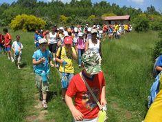 Galería de fotos » Excursiones - Subida al Refugio (2)   GMR summercamps
