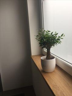 Fensterbank aus Eiche