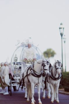 Cinderella wedding carriage | Binary Flips Photography