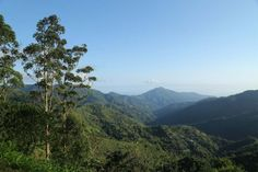 http://www.visitjamaica.com/the-blue-john-crow-mountains-national-park-a-world-heritage-site