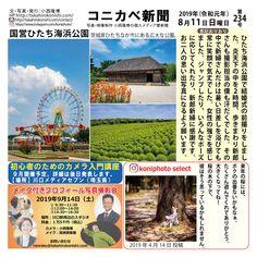 コニカベ新聞第234号です。 国営ひたち海浜公園 茨城県ひたちなか市にある広大な公園です。 The Selection