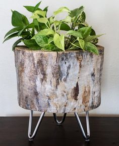 Tree Stump Idea DIY Planter | If you are looking for a great planter idea, try this DIY project.