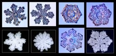 Sacred Geometry and Fractals in snowflakes