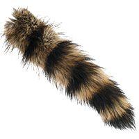 dieren staart - Google zoeken