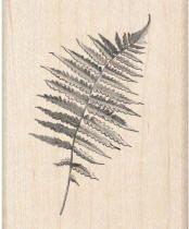 Inkadinkado Wood Mounted Rubber Stamp - Fern