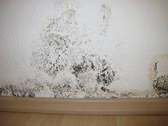 Combattre l'humidité des murs