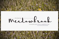 Meadowbrook Font — By Brittney Murphy Design Free for personal and non-profit use. For commercial use, please purchase a license: http://brittneymurphydesi