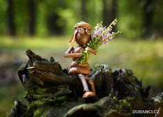 Utajený svět dubových lidiček