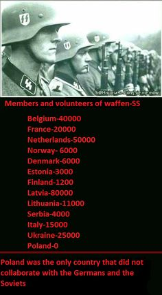 Members and volunteers of Waffen-SS Poland Facts, Poland History, Visit Poland, True Facts, World War Two, Finland, Wwii, Norway, Germany
