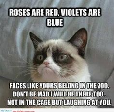 Roses Are Red, Funny Quotes about zoo - http://myquoteshome.com/roses-are-red-funny-quotes-about-zoo/