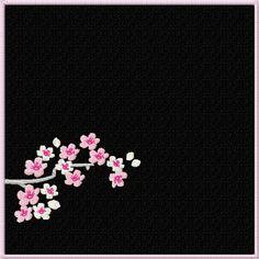 cherry_blossom-3.jpg (518×518)