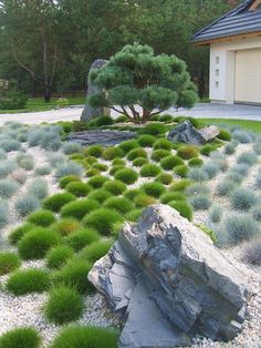 Landscaping With Rocks, Outdoor Landscaping, Outdoor Plants, Front Yard Landscaping, Outdoor Gardens, Japanese Garden Landscape, Japanese Garden Design, Garden Landscape Design, Mediterranean Garden