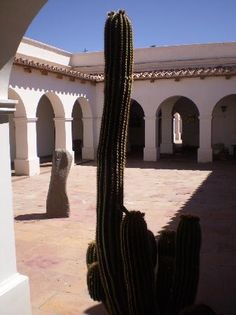 Museo Pío Pablo Díaz, Cachi - Salta Cactus Plants, Trip Advisor, Patio, Places, Travel, Salta, Museums, Argentina, Architecture