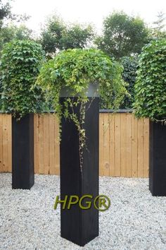 A completely new system for climbing plants. maintenance friendly. The planting stands with its roots in solid ground. there is no earth in the column itself. The wooden pillar can be finished with a zinc cap or a square or pyramid wire grid. Made by Hivy Pillar Greenfashion (HPG) www.hivypillar.nl