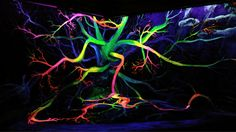 Painting 3D Chromadepth Fractal Art, Fractals, Spiral Pattern, String Art, Different Colors, Neon Signs, 3d, Abstract, Painting