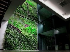 Vertical garden and green roof dynamos, Urbanarbolism, have successfully completed another project in collaboration with Paisajismo Urbano, this time an indoor vertical garden in Elche, Spain. The three story indoor garden is considered to be Spain's largest and also works to clear the air of indoor office pollutants.