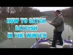 How to locate and catch wintertime catfish: *tips and techniques* Gone Fishing, Fishing Tips, Cat Fishing, How To Catch Catfish, Catfish Fishing, Games Today, Fish Camp, Fishing Humor, Safety Tips