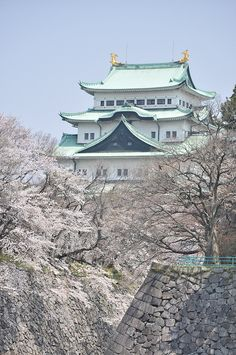 Nagoya Castle, Japan 名古屋城. I just can't! This is the most beautiful thing I have ever seen! I know where I need to go when I visit Japan!