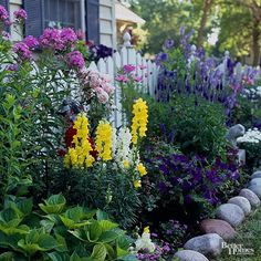 This forlorn front yard became an eye-catching cottage garden in the hands of a Minnesota couple. We love how the homeowners updated the curbside view by replacing lackluster foundation shrubs with an abundance of perennials, annuals, and bulbs. Pink phlox and purple veronica are accented by yellow and white snapdragons and purple petunias to create a vibrant, cheerful color scheme, and a white picket fence adds instant charm. Test Garden Tip: Recreate this look by planting old-fashioned…