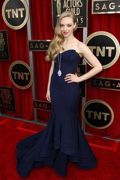 Todas las fotos de la alfombra roja de los Screen Actors Guild Awards 2013