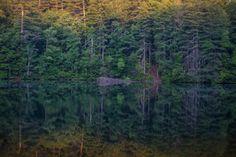 Zack Smith Photography North Carolina Brevard School of Music Center Woods…