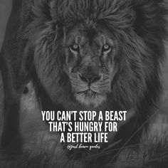 Hunger for a better life Babe Quotes, Badass Quotes, Good Quotes, Attitude Quotes, Wisdom Quotes, Woman Quotes, Thug Life Quotes, Motivational Quotes In English, English Quotes