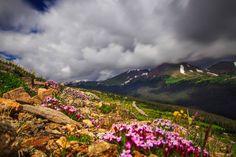 Ute Trail - Rocky Mountain National Park ~ Colorado