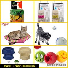 Today is Earth Day Here are some eco-friendly, recyclable, and biodegradable products we sell on our online pet boutique. Pet Boutique, Earth Day, Biodegradable Products, Dog Bowls, Dog Food Recipes, Articles, Pets, Dog Recipes, Animals And Pets