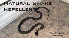 All Natural Snake Repellent Ingredients Clove oil Cinnamon oil Simply mix a 50:50 mixture of clove and cinnamon oils and spray them around the foundation of your home, dog houses, walkways, garages, doors or anywhere you want to keep snakes away from.