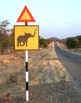 Very familiar road sign around Hwange, there used to be more elephants than people back in those days...