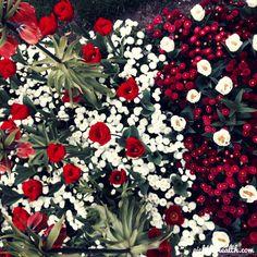 flowrs geneva botanic garden