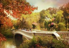 Bow Bridge Crossing (Central Park, NYC) by Jessica Jenney