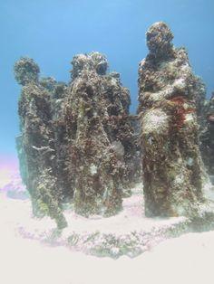 MUSA (Museo Subacuático de Arte) - 101148030116520783754 - Picasa Web Albums