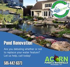 If your rubber pond liner is more than 20 years old or you are experiencing excessive leaks in your pond or waterfall, chances are you are in need of a new pond liner and lucky for you Acorn Ponds & Waterfalls specializes in replacing liner & renovating o Honeoye Falls, Union Hill, Pond Maintenance, Livingston County, Pond Liner, Leak Repair, Rochester New York, Pond Waterfall, Pond Water Features